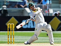 Ashes Series-photogalery-3