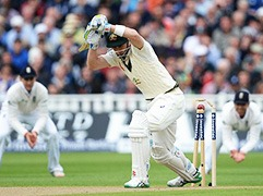 Ashes Series-photogalery-5